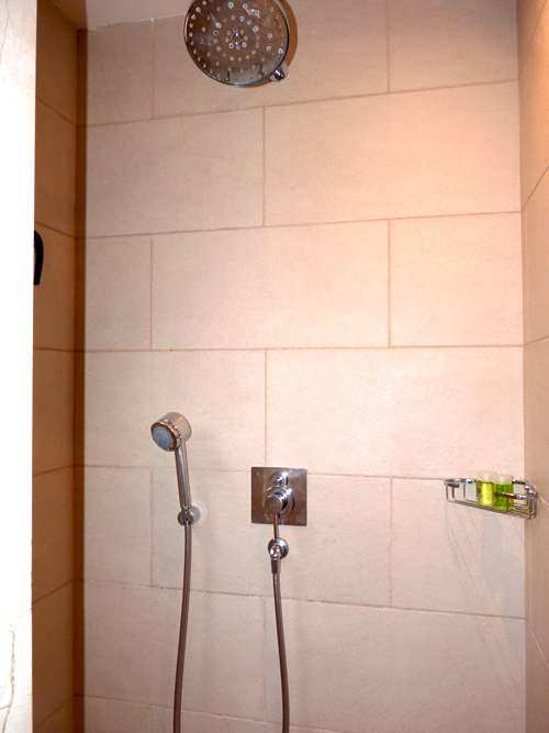 luxury-rain-shower