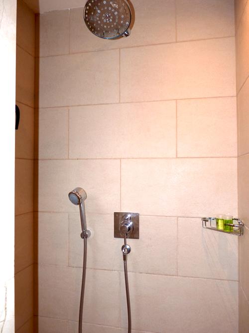 luxury-rain-shower