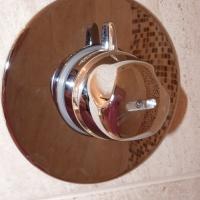 shower-tap