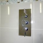 showertaphotandcold.jpg